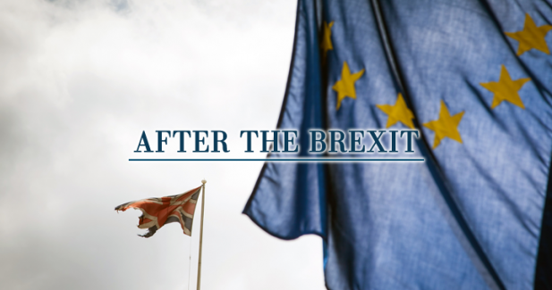 The Brexit-effect: what does not kill you makes you stronger?