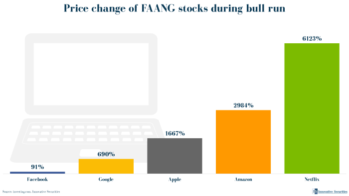 Price change of FAANG stocks during bull run